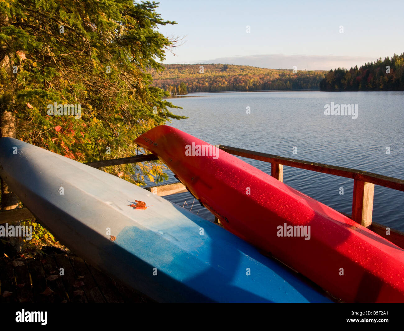 Red and Blue kayak on a dock in Canadian cottage country with fall colours - Stock Image