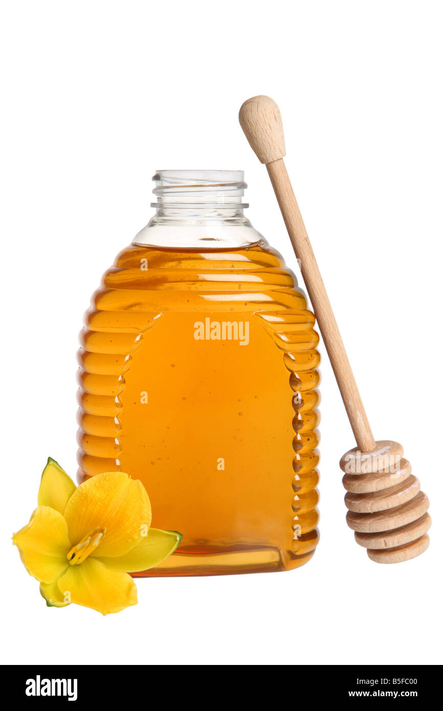 Honey drizzler and flower cutout on white background - Stock Image