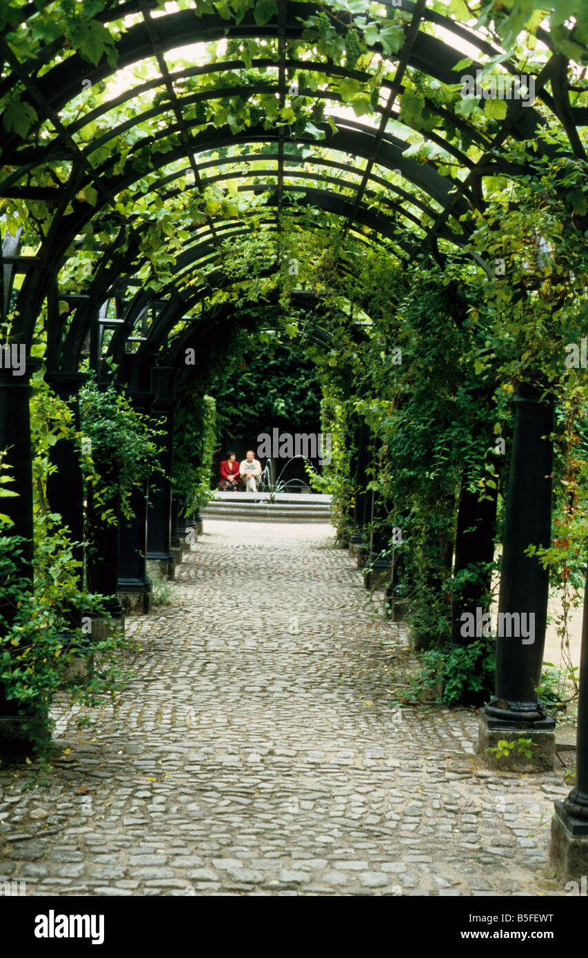 Pergola with grape-vines in garden of Rubens' house in Antwerp Belgium. - Pergola With Grape-vines In Garden Of Rubens' House In Antwerp Stock