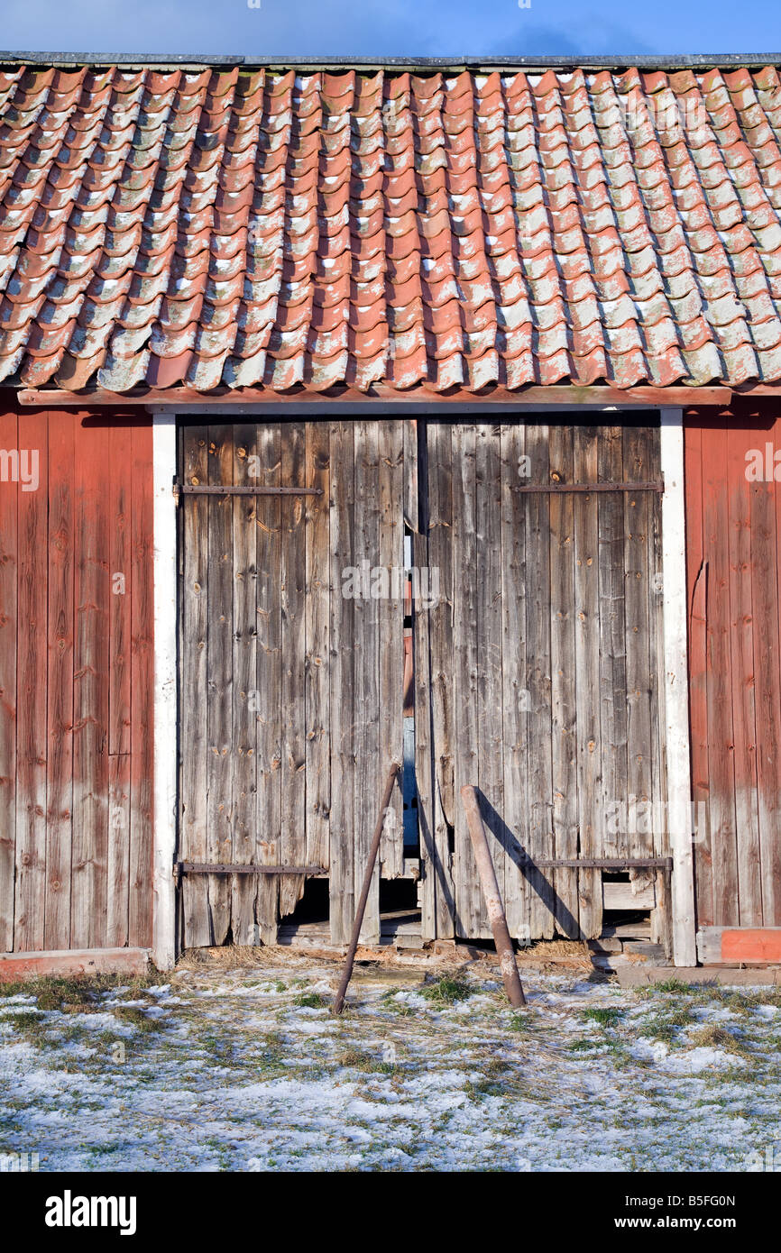 Old weathered barn door The red paint is traditional Swedish red ochre - Stock Image