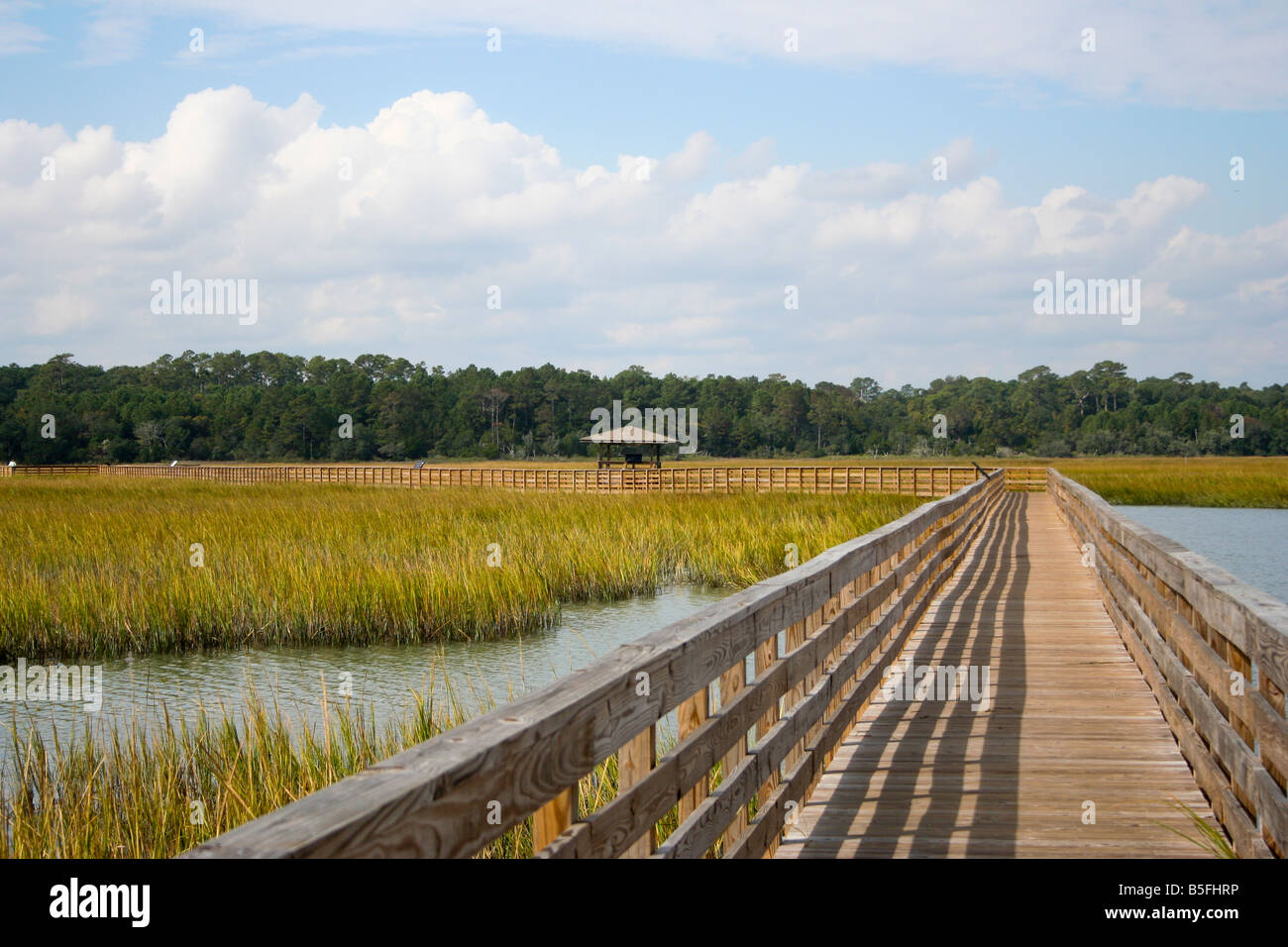 A wooden boardwalk leads across the salt marsh at Huntington Beach State Park in South Carolina. - Stock Image