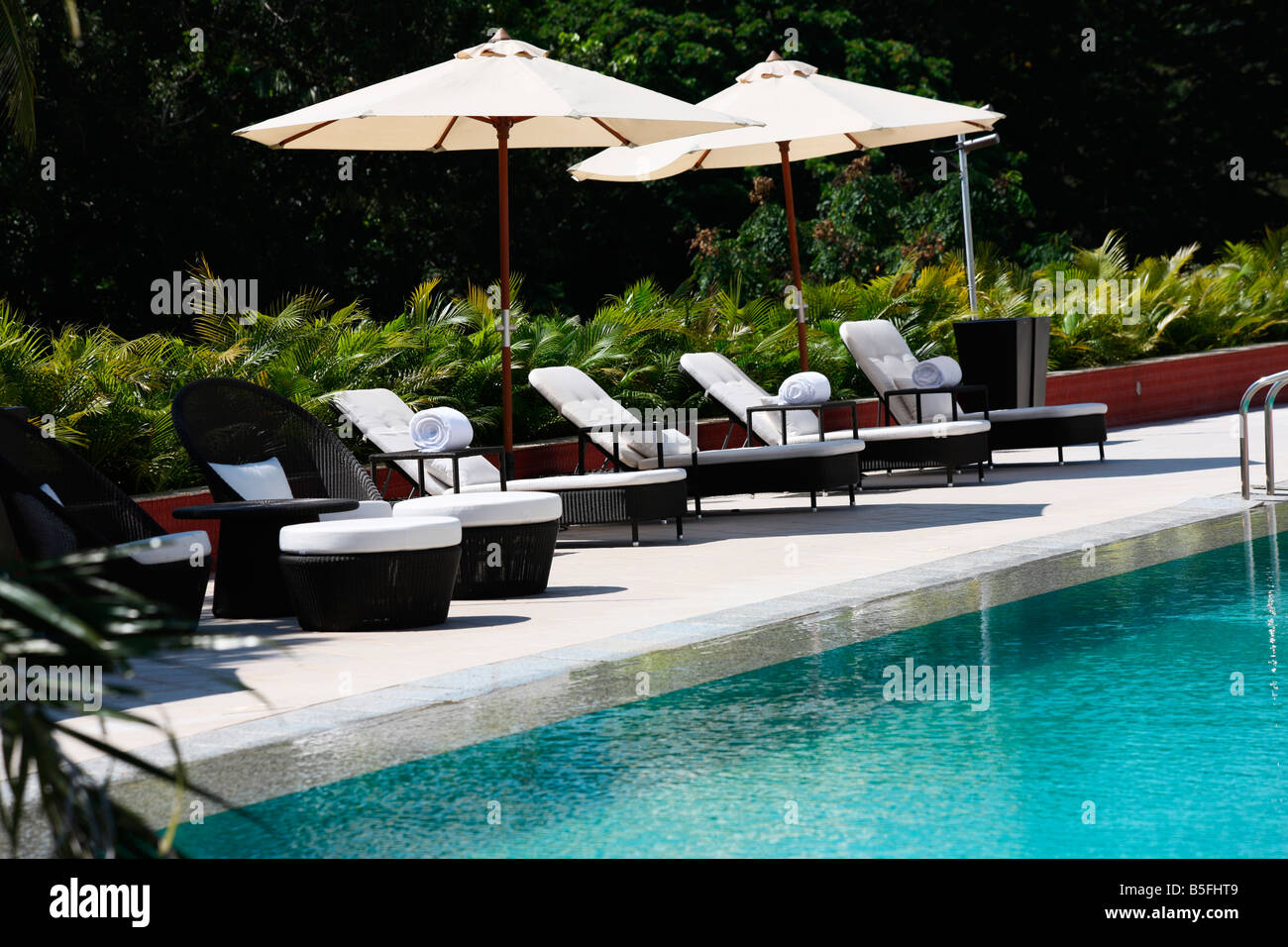 swimming pool with deck chairs in a five star hotel in kerala india