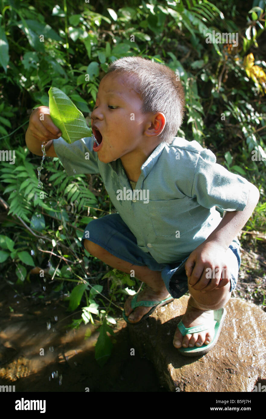 Nepal: young boy drinks water from a source with a leaf - Stock Image