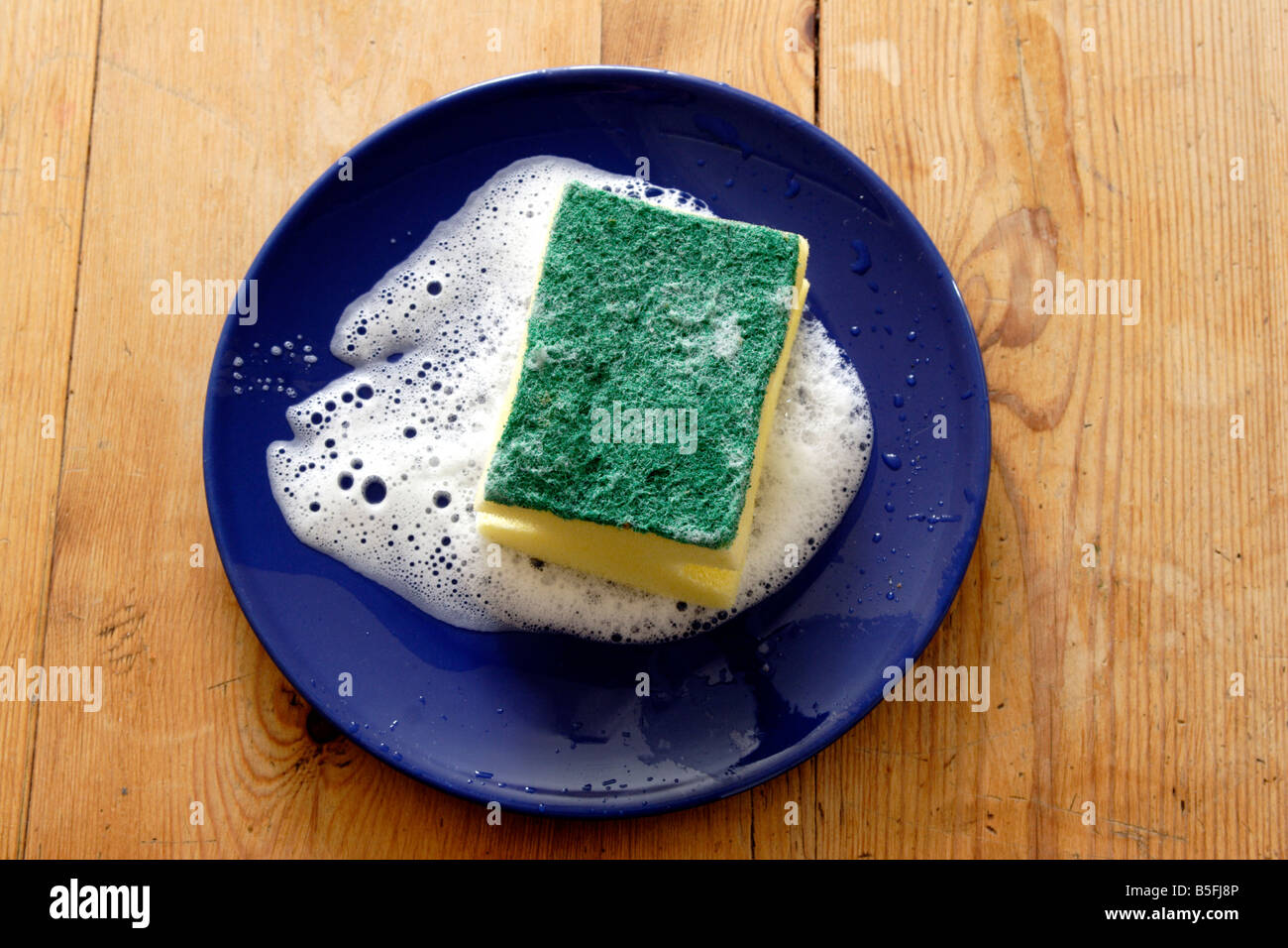 Soapy sponge cleaning plate close up Stock Photo: 20627286