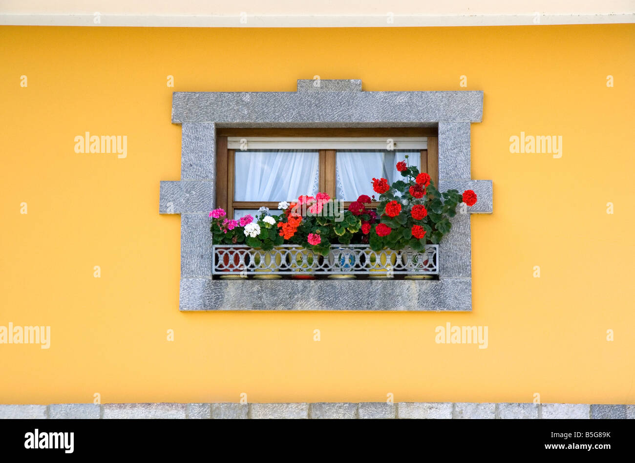 Window box with flowers on a residential home near Potes Liebana Cantabria northwestern Spain - Stock Image