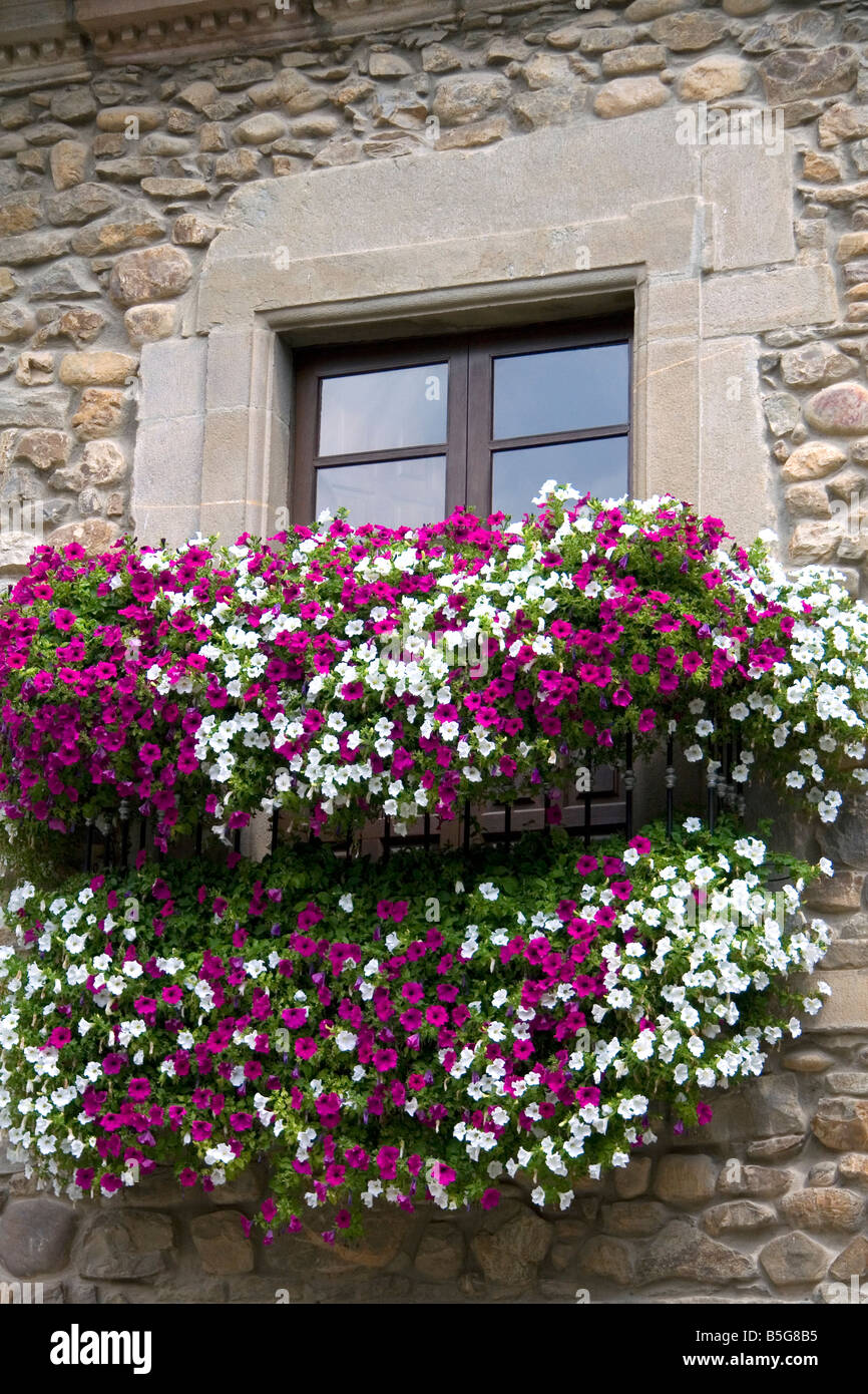 Window box with flowers in the town of Potes Liebana Cantabria northwestern Spain - Stock Image