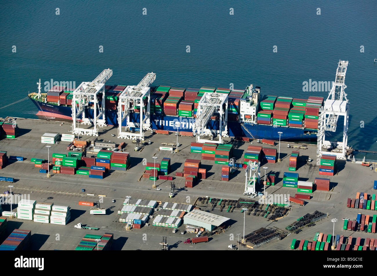 aerial view above cranes unloading Evergreen containers from containership Triestin Port of Oakland California - Stock Image