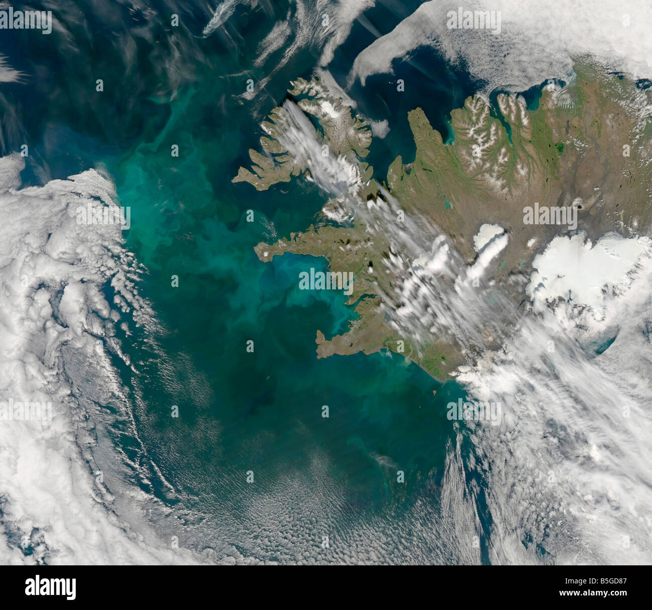 Phytoplankton bloom in the North Atlantic Ocean. Stock Photo