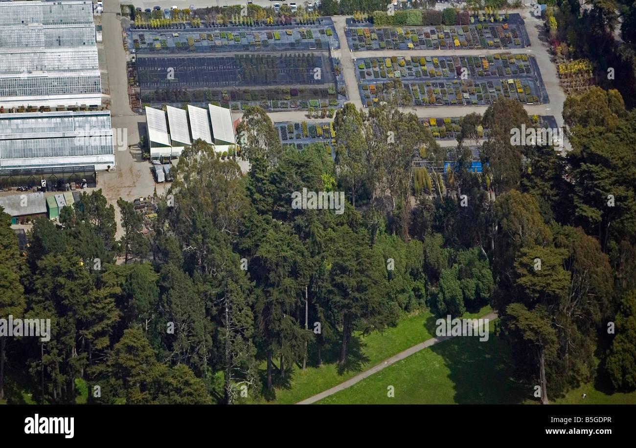 aerial view above Botanical garden Golden Gate park San Francisco California - Stock Image