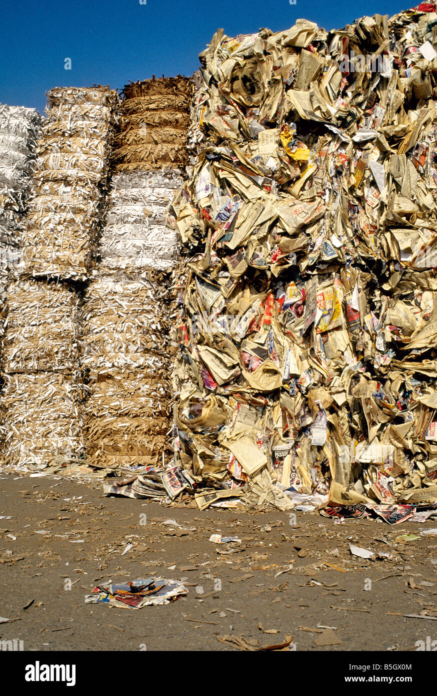 Stacked bundles of shredded & baled paper to be recycled. - Stock Image