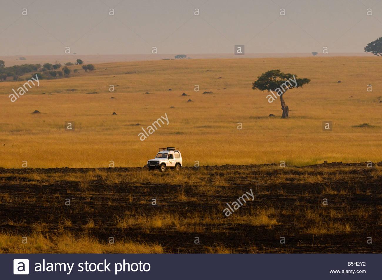 Aerial view of a park vehicle Masai Mara National Reserve Kenya - Stock Image