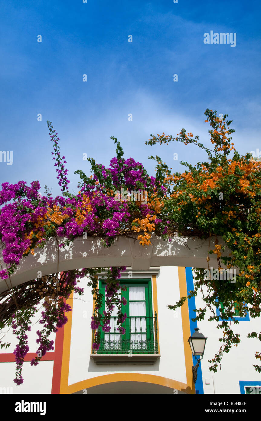 Arch of pink and orange Bougainvillea with typical Canary luxury holiday apartments behind Puerto de Mogan Gran - Stock Image
