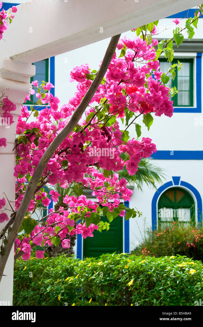 Pink Bougainvillea with luxury holiday apartments in marina resort of Puerto de Mogan Gran Canaria Canary Islands - Stock Image
