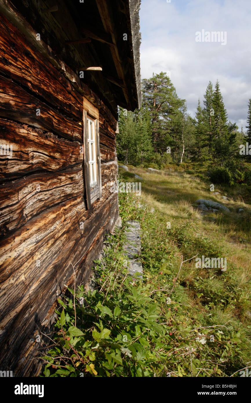 A hut in Töfsingdalens National Park in Dalarna. - Stock Image