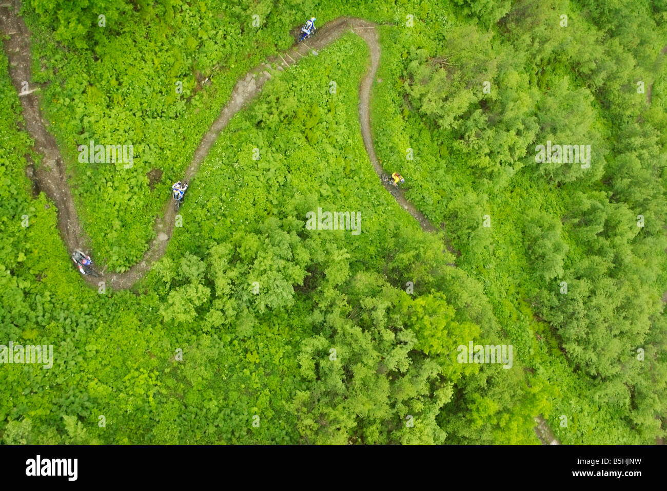 Four downhill cyclists on a path, aerial perspective - Stock Image