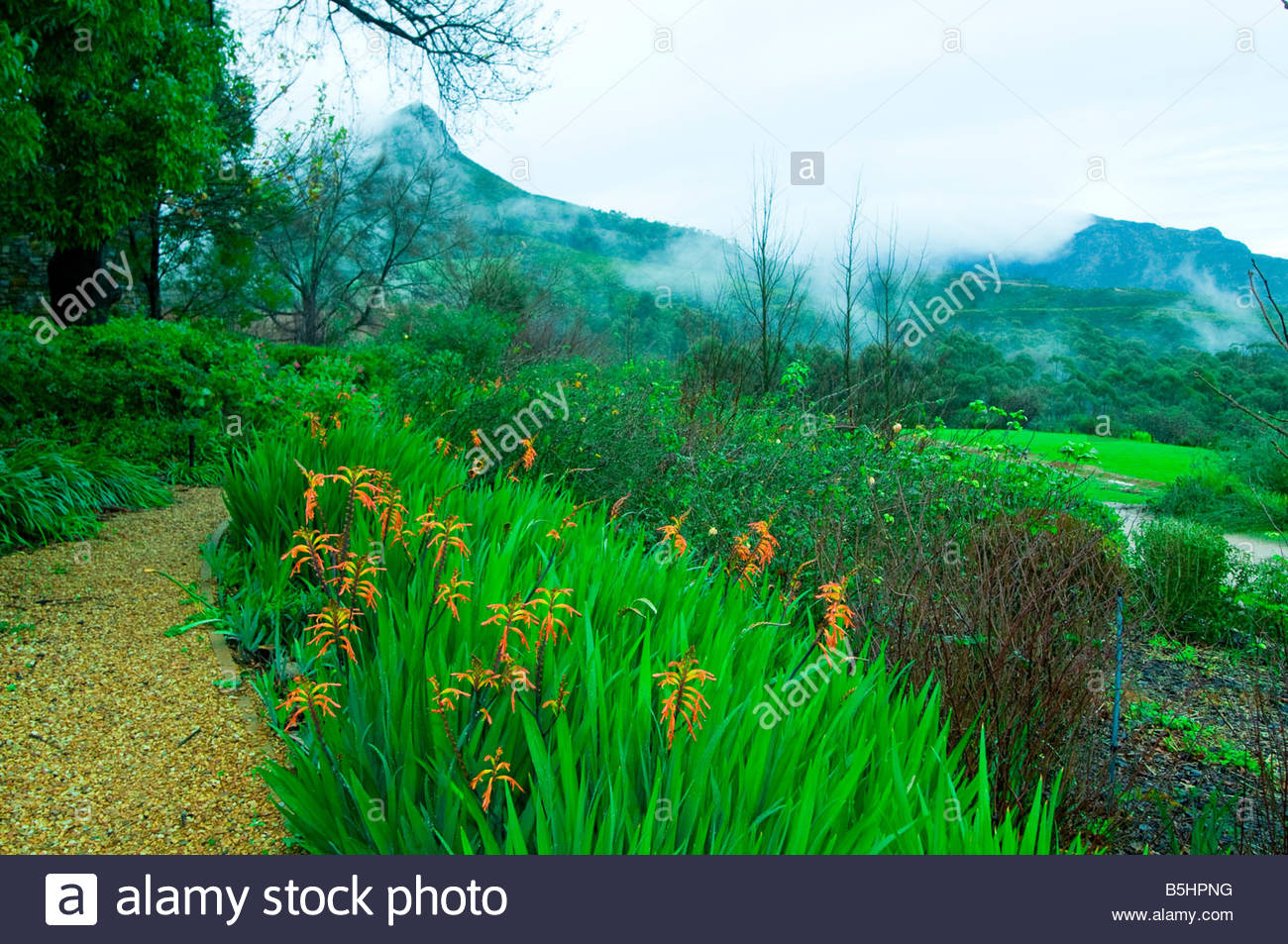 Gardens of the Tokara Winery on Helshoogte Pass near Stellenbosch South Africa - Stock Image