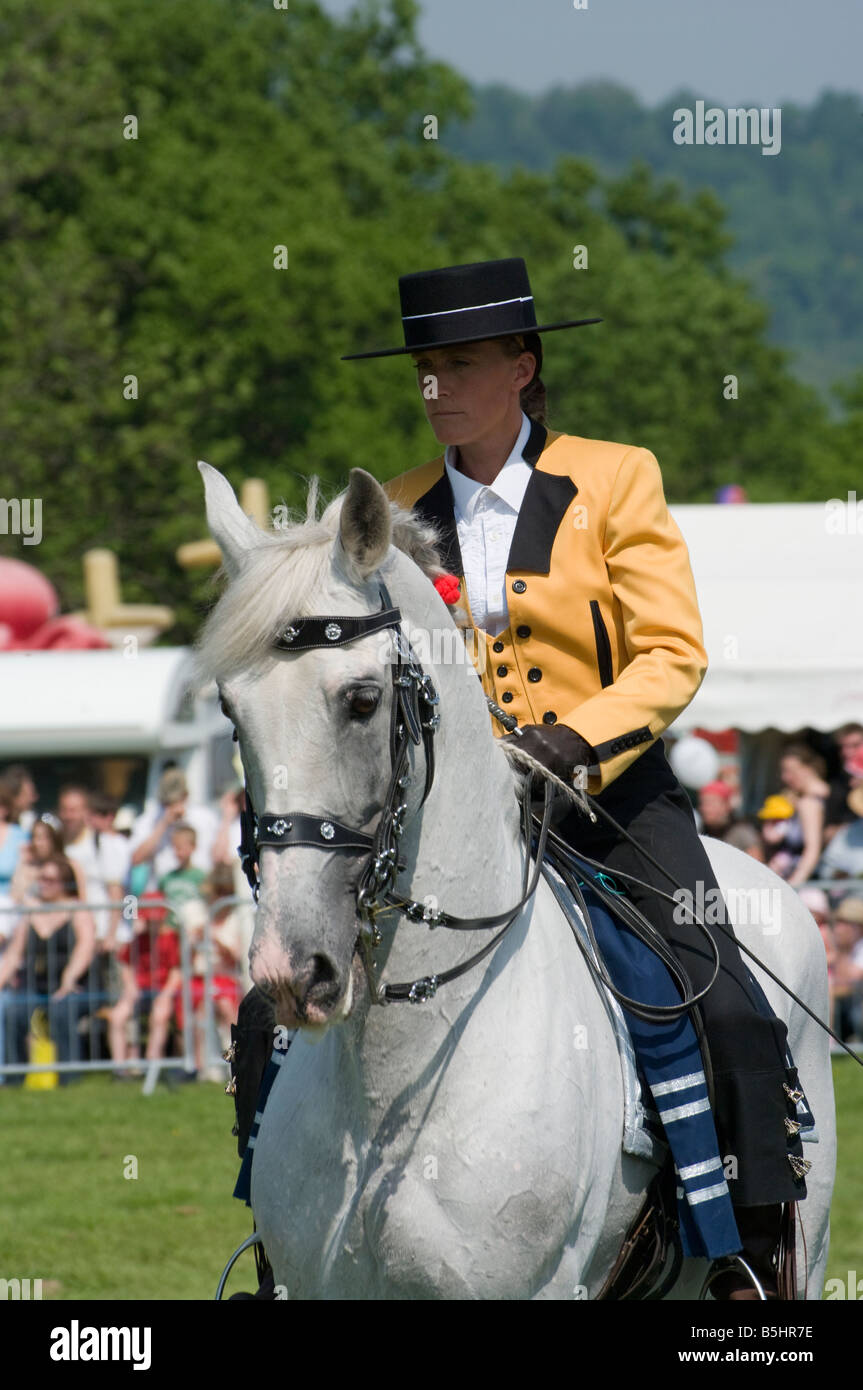 Andalusian Stallion with a Female Rider In Traditional Spanish Costume Person riding a white horse - Stock Image
