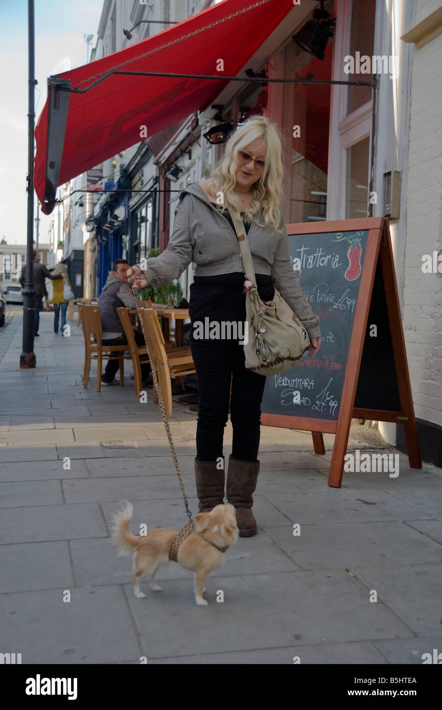 A woman walks her small pedigree dog along Kensington Park Road in Nottinghill Portobello London - Stock Image
