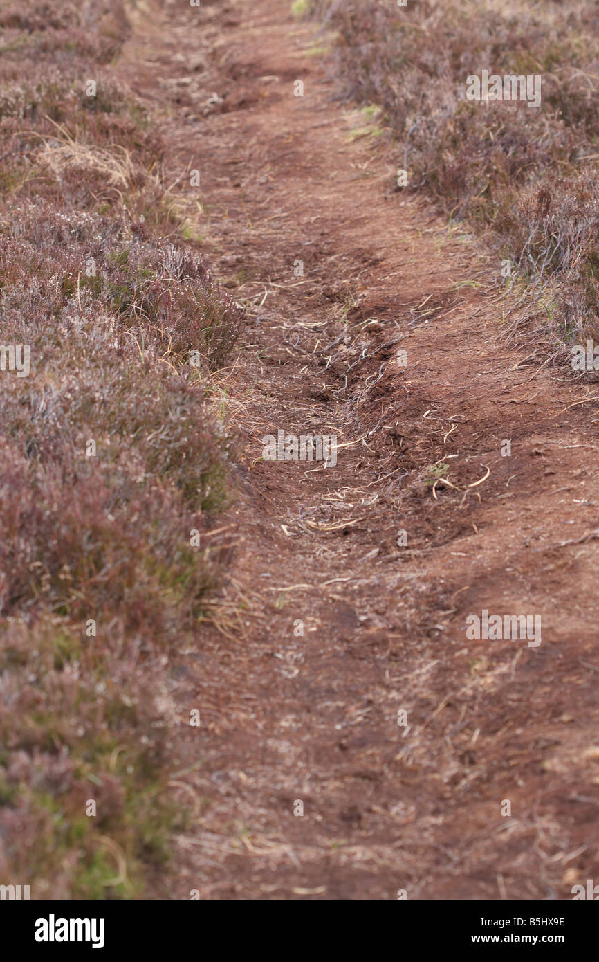 PATH THROUGH PEAT BOG SOON SHOWS SIGNS OF WEAR Stock Photo