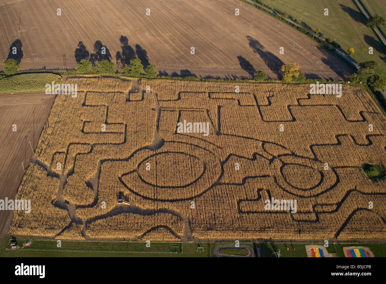 Maze in field of Maize Norfolk UK October - Stock Image