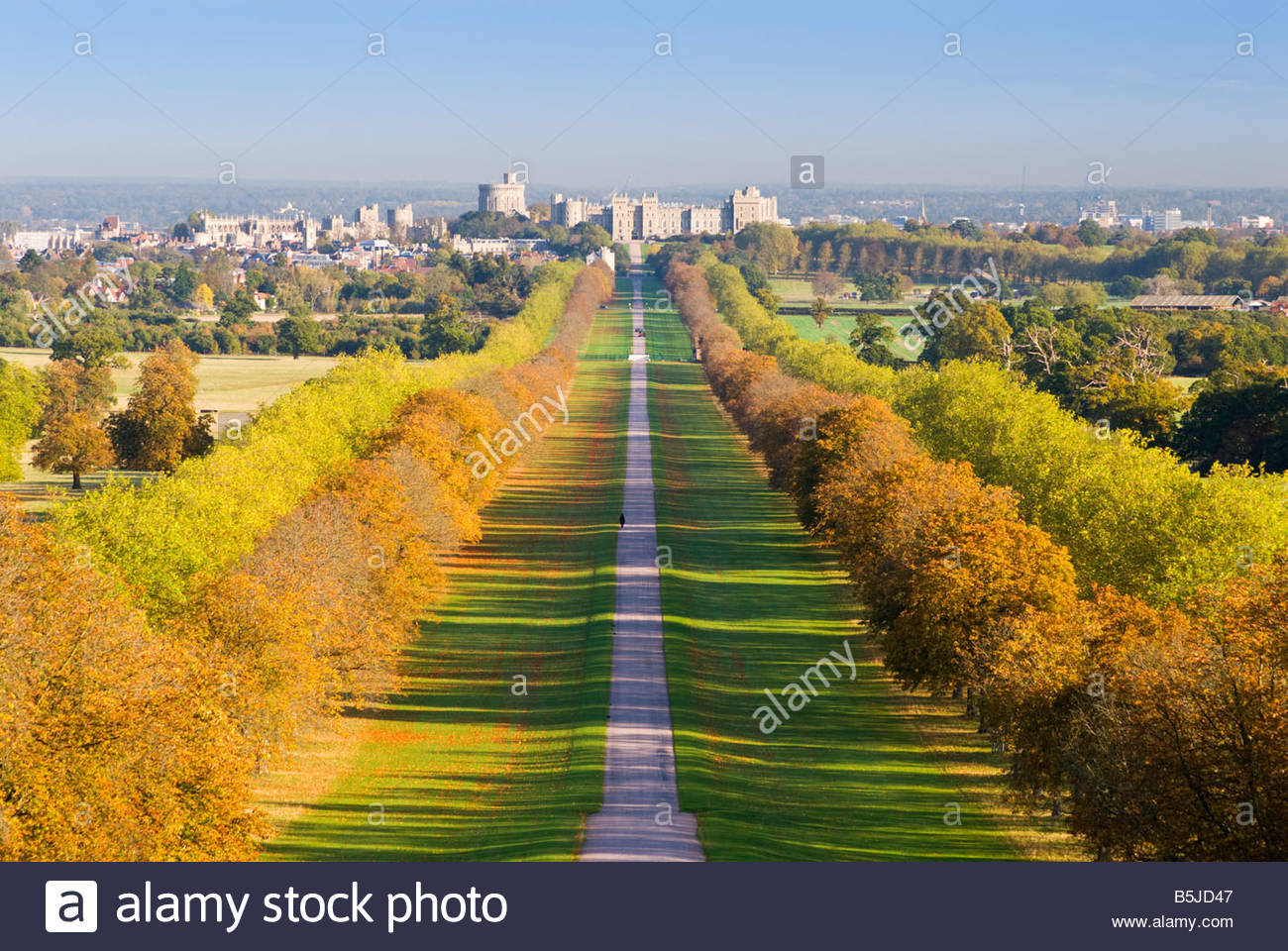 Autumn view of The Long Walk, at Windsor Castle, Berkshire. - Stock Image