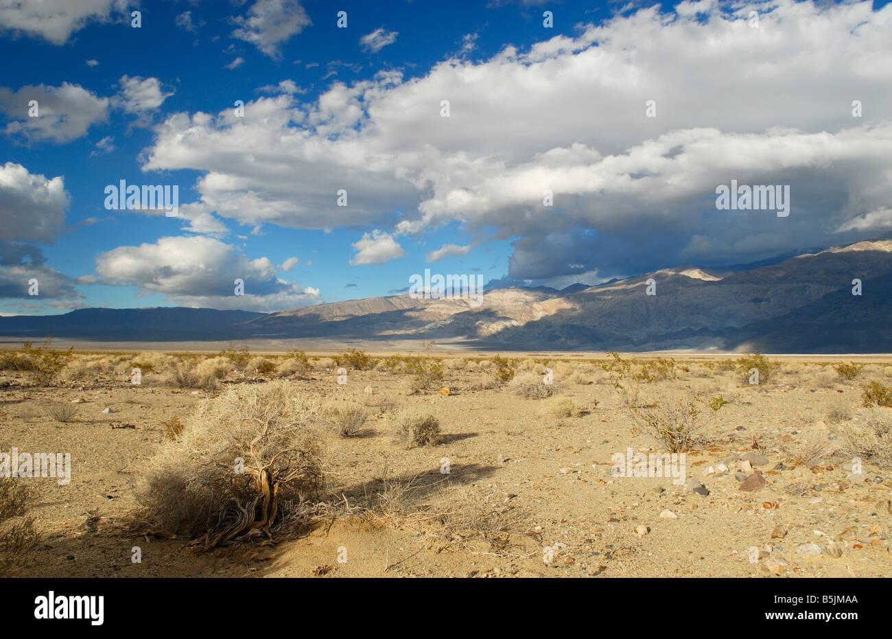 Mojave Desert in California - Stock Image