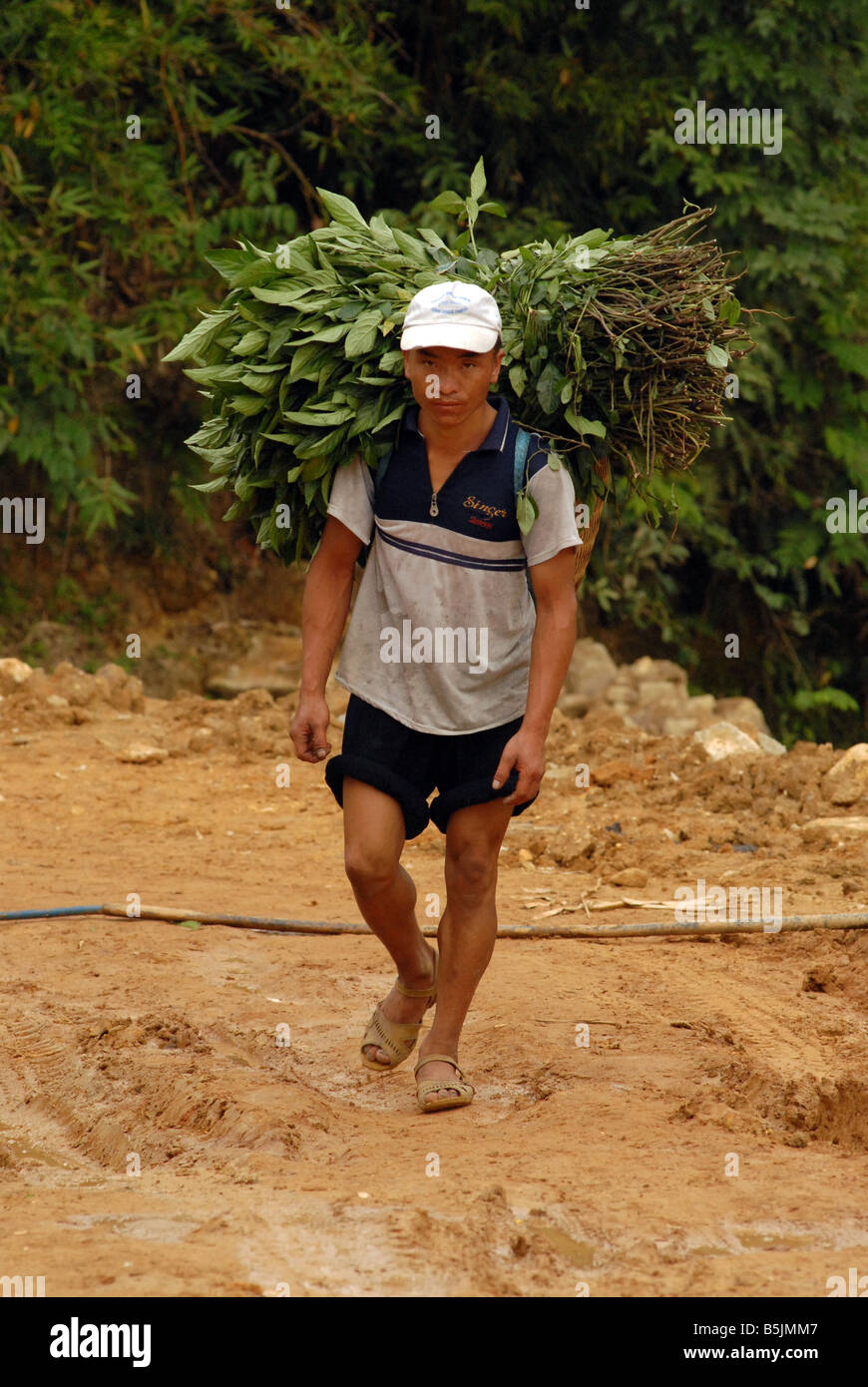 Hmong peasant returning from the fields Northern Vietnam - Stock Image
