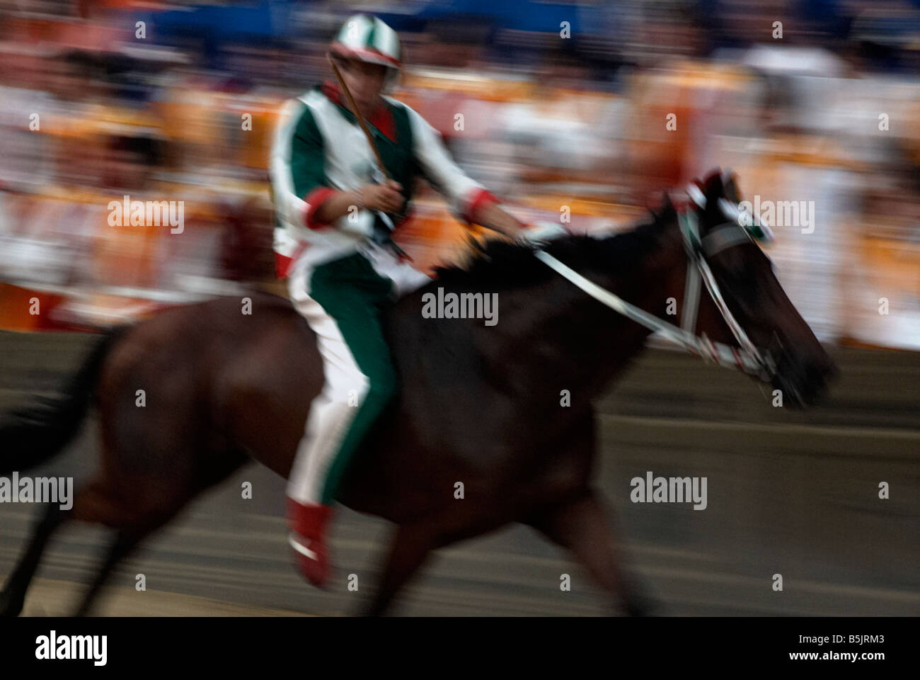 Galloping Horse And Jockey During The Palio Siena