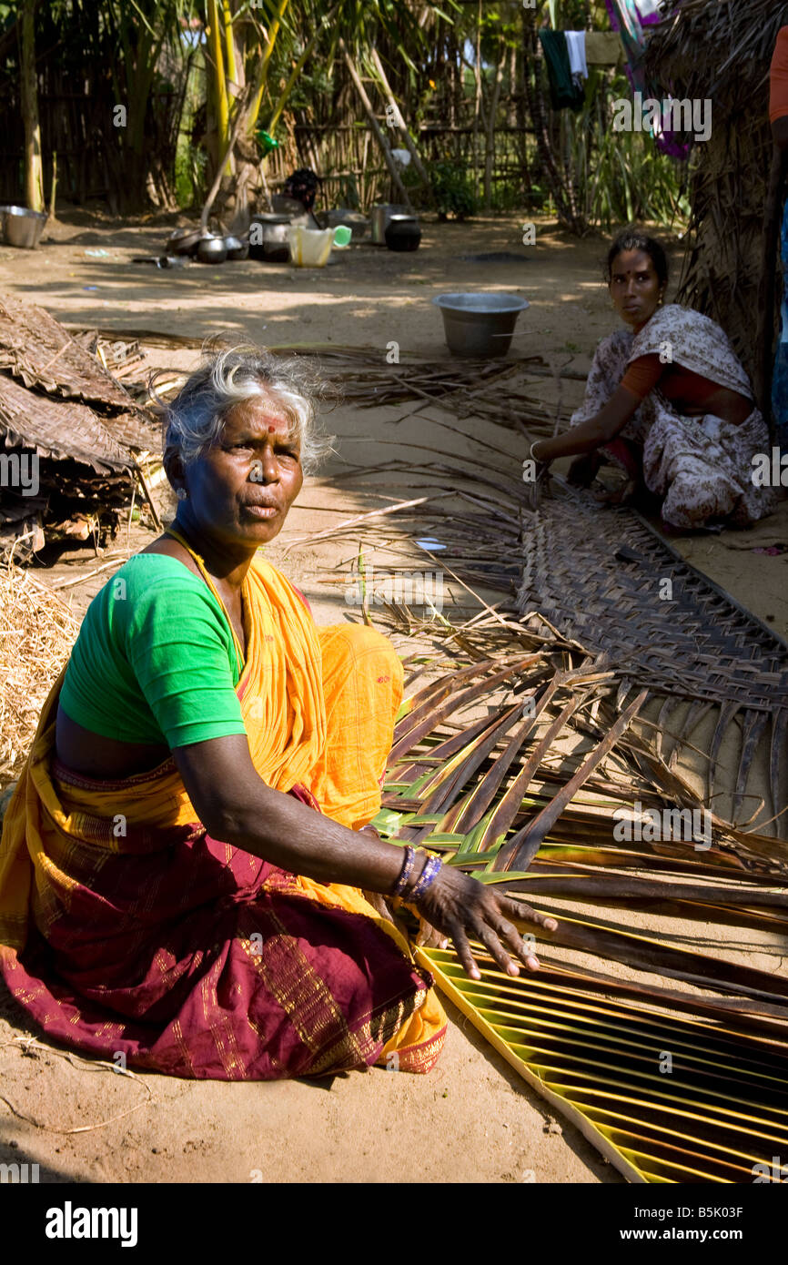 Ananthanyee plats palm leaves for building houses to earn 20 rupees per day Uppulavadi village Tamil Nadu - Stock Image