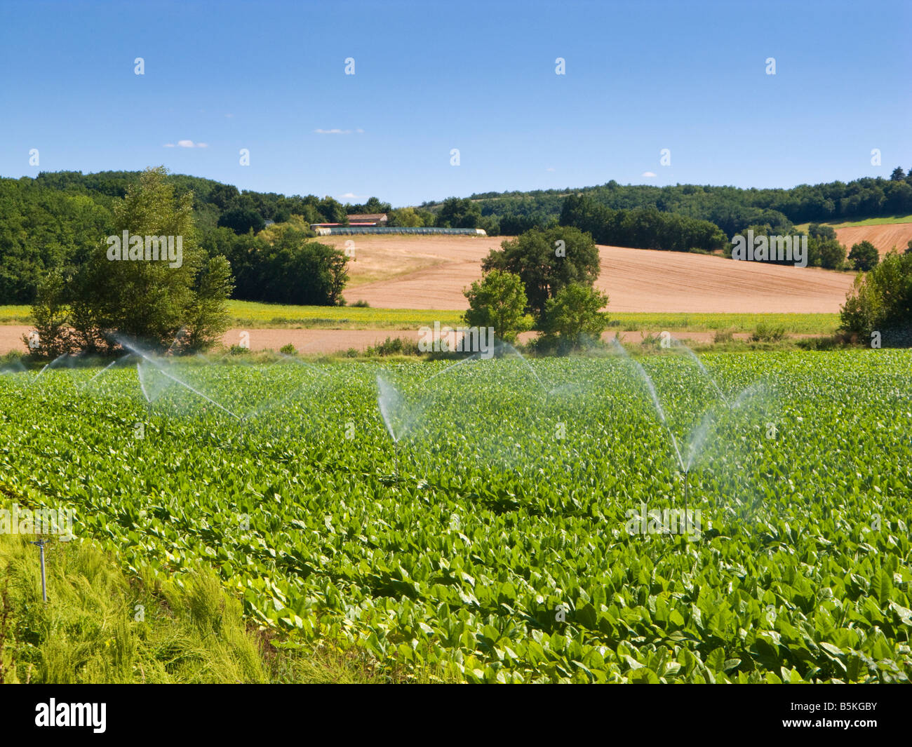 Automatic crop irrigation system in a field in the South of France, Europe - Stock Image