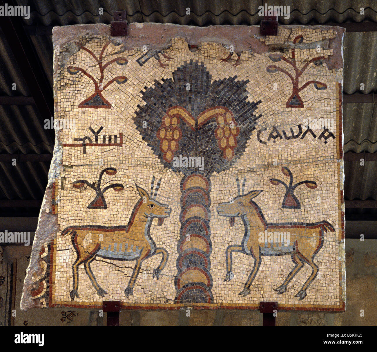 popular brand where can i buy new arrive Mount Nebo Basilica of Moses Jordan Mosaic Stock Photo ...