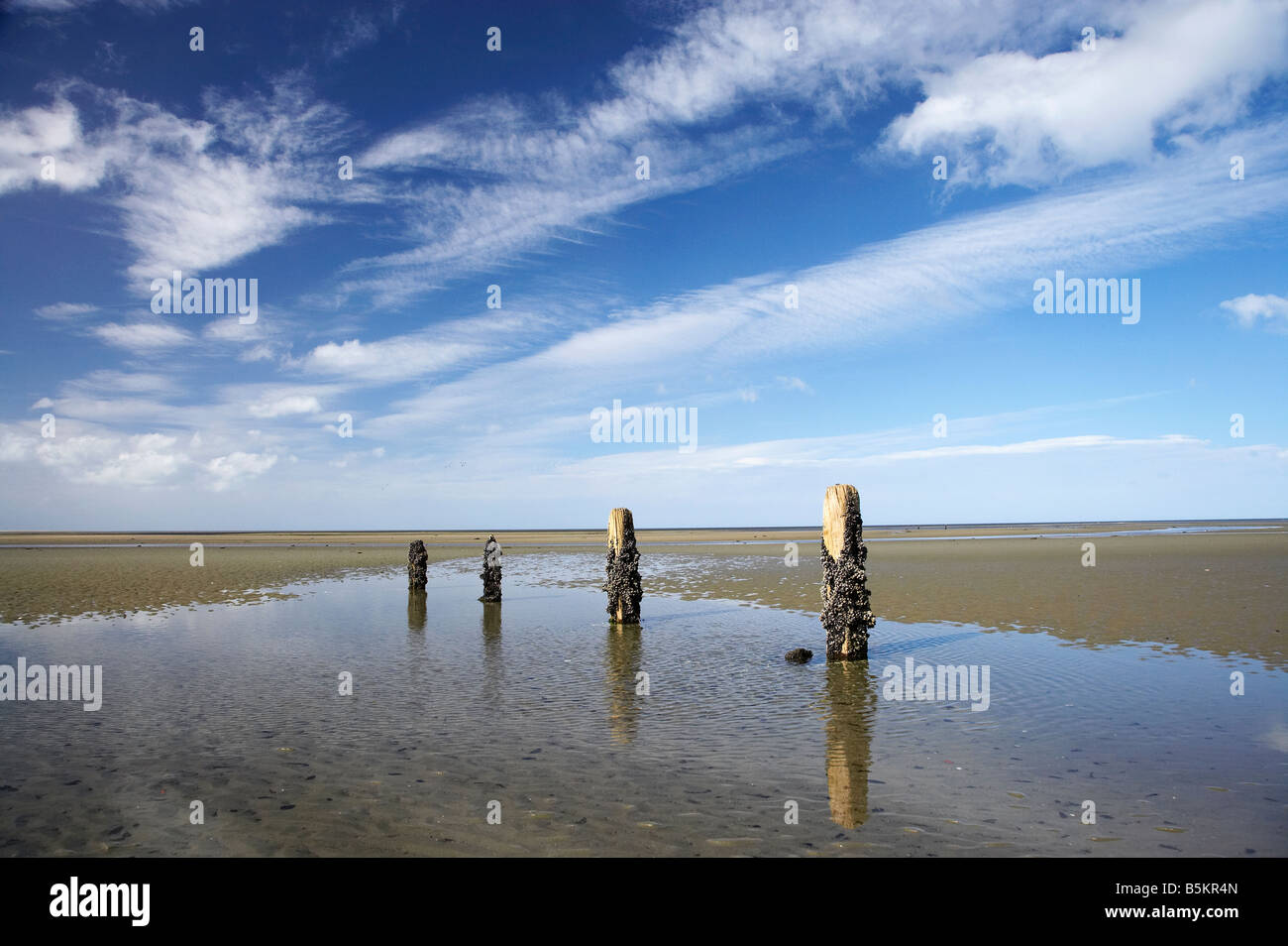 Old Jetty Piles Collingwood Golden Bay Nelson Region South Island New Zealand Stock Photo