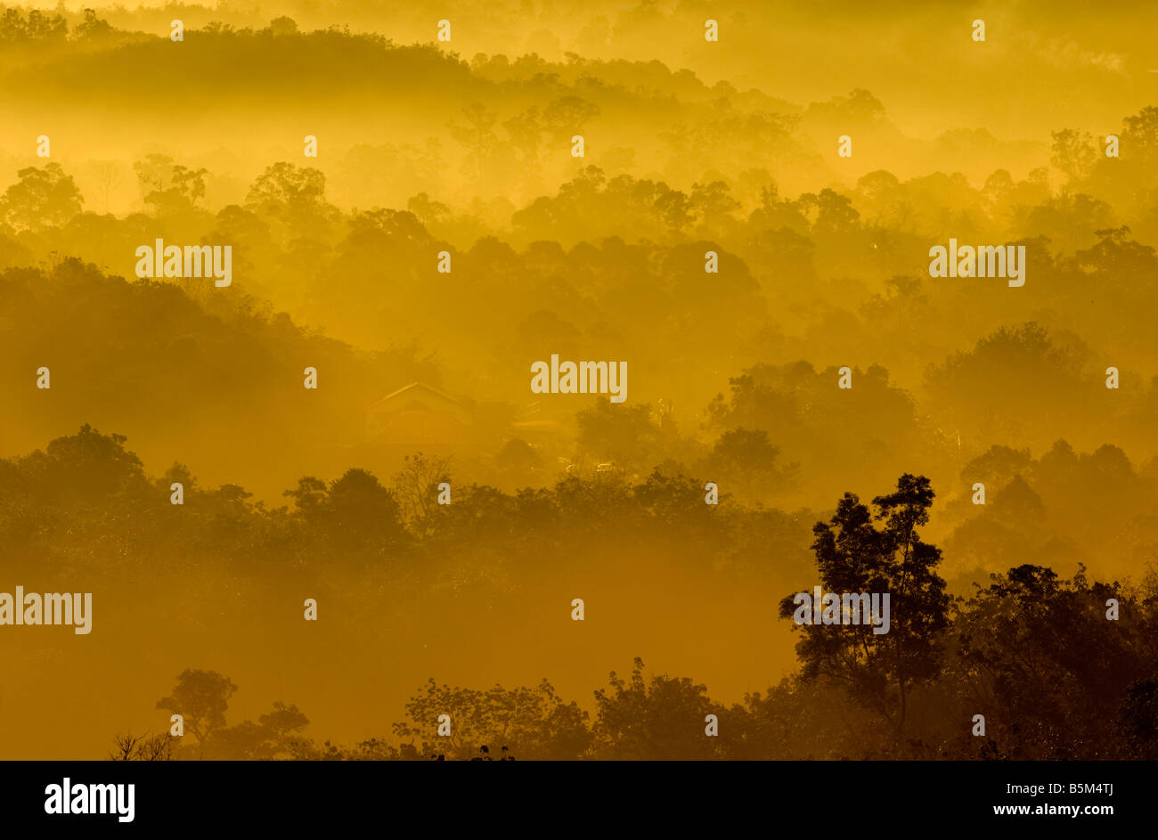 Golden colors of misty hilly area with ray of light Stock Photo