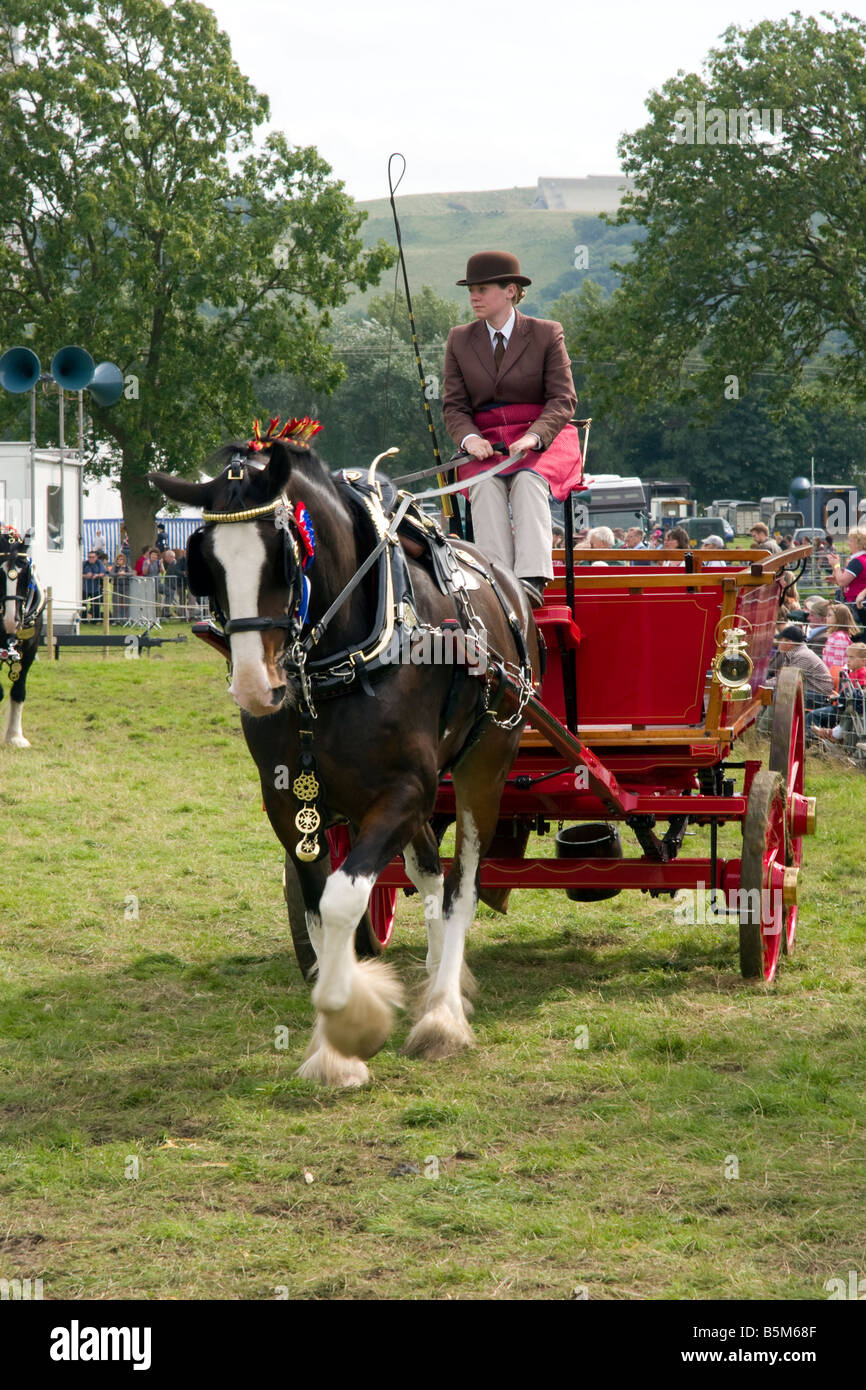 horse and cart turnout at the 2008 hope show - Stock Image