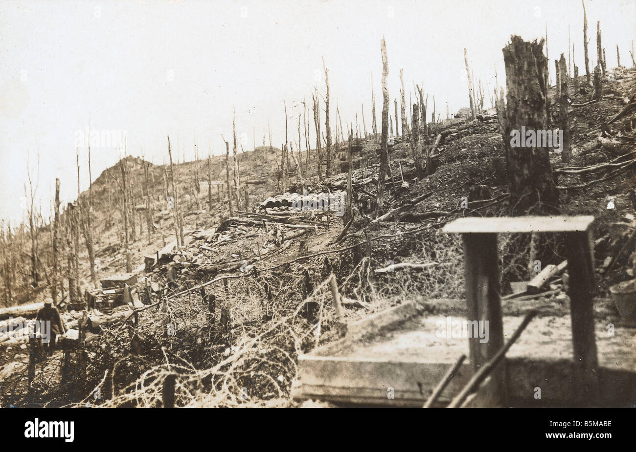 2 G55 W1 1916 17 WWI Western Front battlefield 1916 History WWI Western Front View of a battlefield at the Western - Stock Image