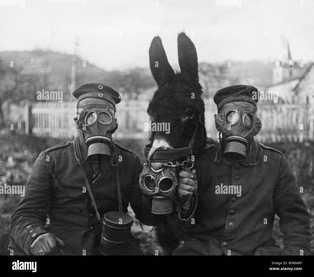 WWI Soldiers and mule w gasmasks 1917 Military Gasmasks Soldiers and a mule with gasmasks dur ing WWI Westfront - Stock Image