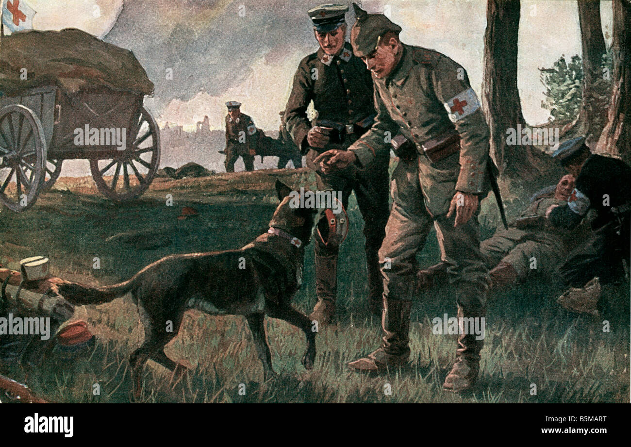 2 M60 L1 1914 11 WW1 A true helper after Roloff Military Medical A true helper A working dog brings the hat of a - Stock Image