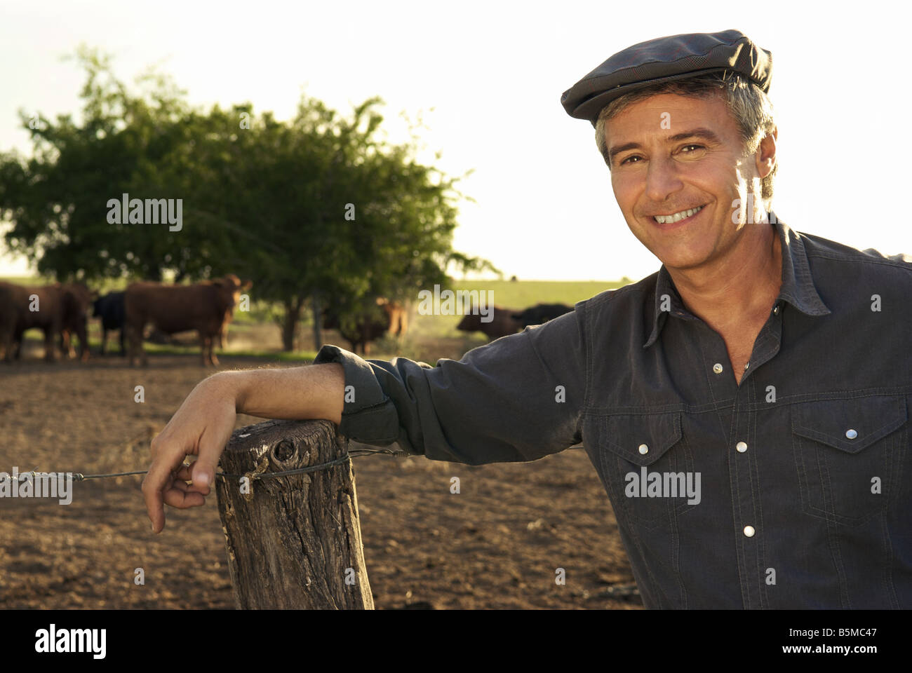A man on a ranch leaning on a fence post - Stock Image