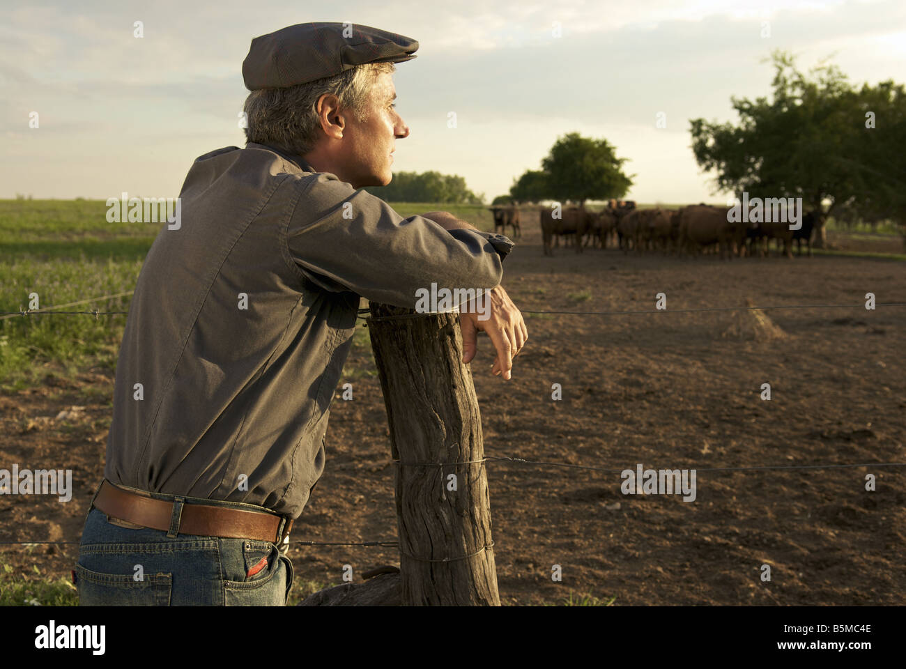 A man on a ranch leaning on a fence post Stock Photo