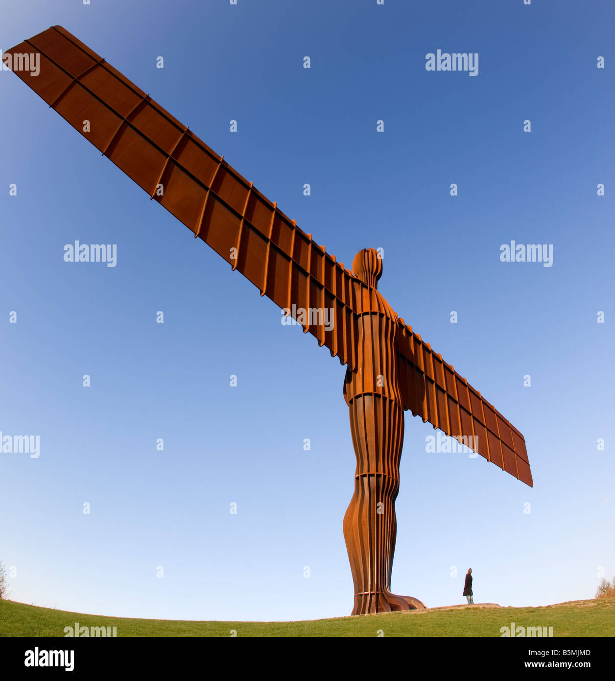 Angel of the North Gateshead Tyne and Wear England UK - Stock Image