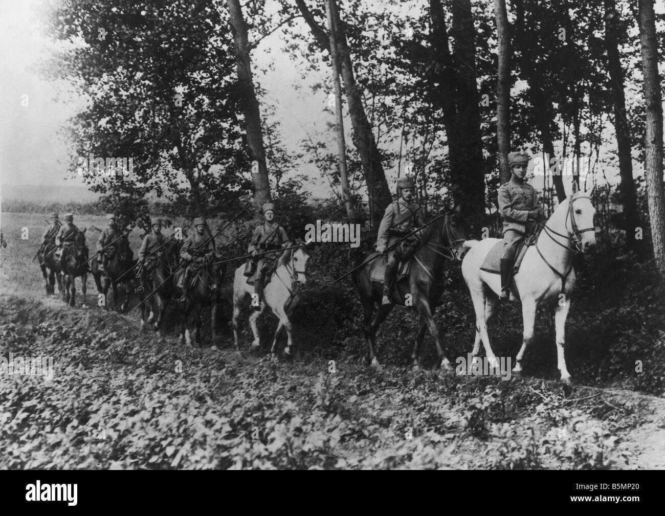 Husar patrol Western Front 1914 World War I Western Front German Husar patrolin a patch of woodland Photo Otto Haeckel Stock Photo
