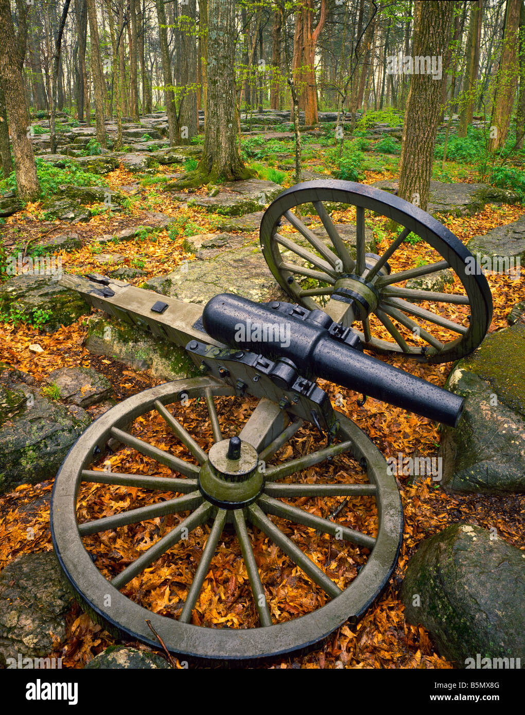 Broken artillery in forest Stones River National Battlefield Tennessee - Stock Image