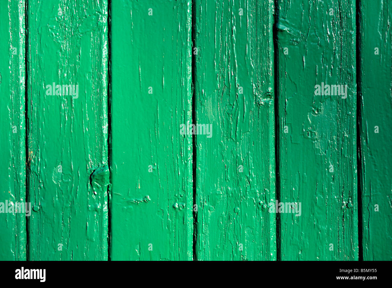 Green painted wooden wall - Stock Image