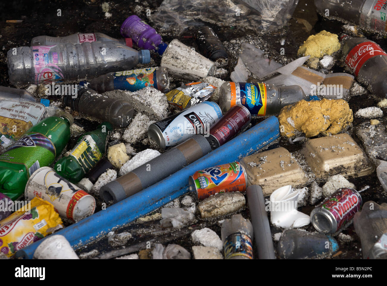 Rubbish floating in the river Orwell at wet dock, Ipswich, Suffolk, UK. - Stock Image