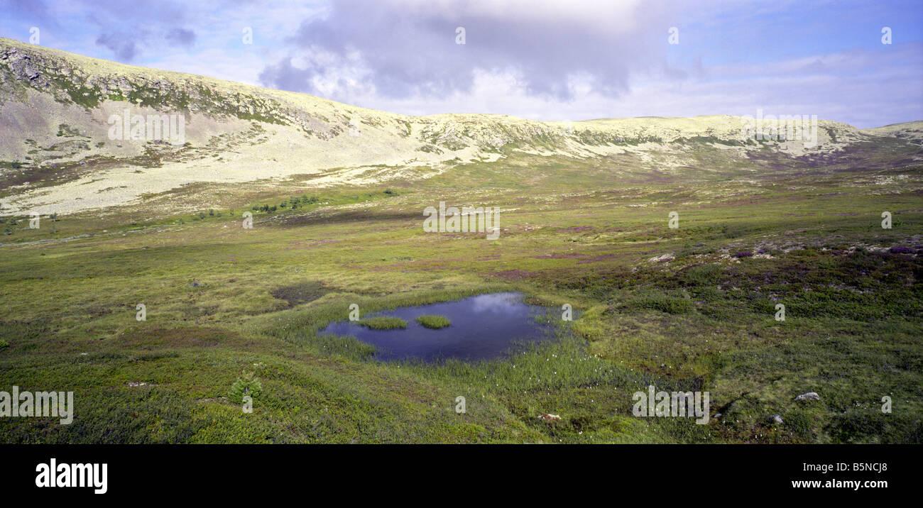 Nipfjället, a mountain region in Dalarna, Sweden - Stock Image