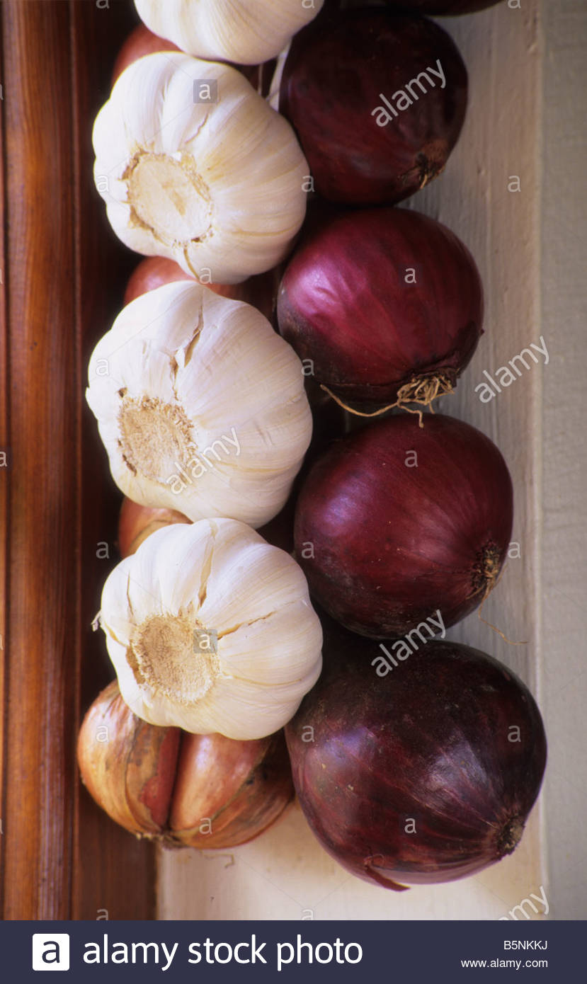 strings of Italian onions garlic and shallots hanging up in kitchen - Stock Image