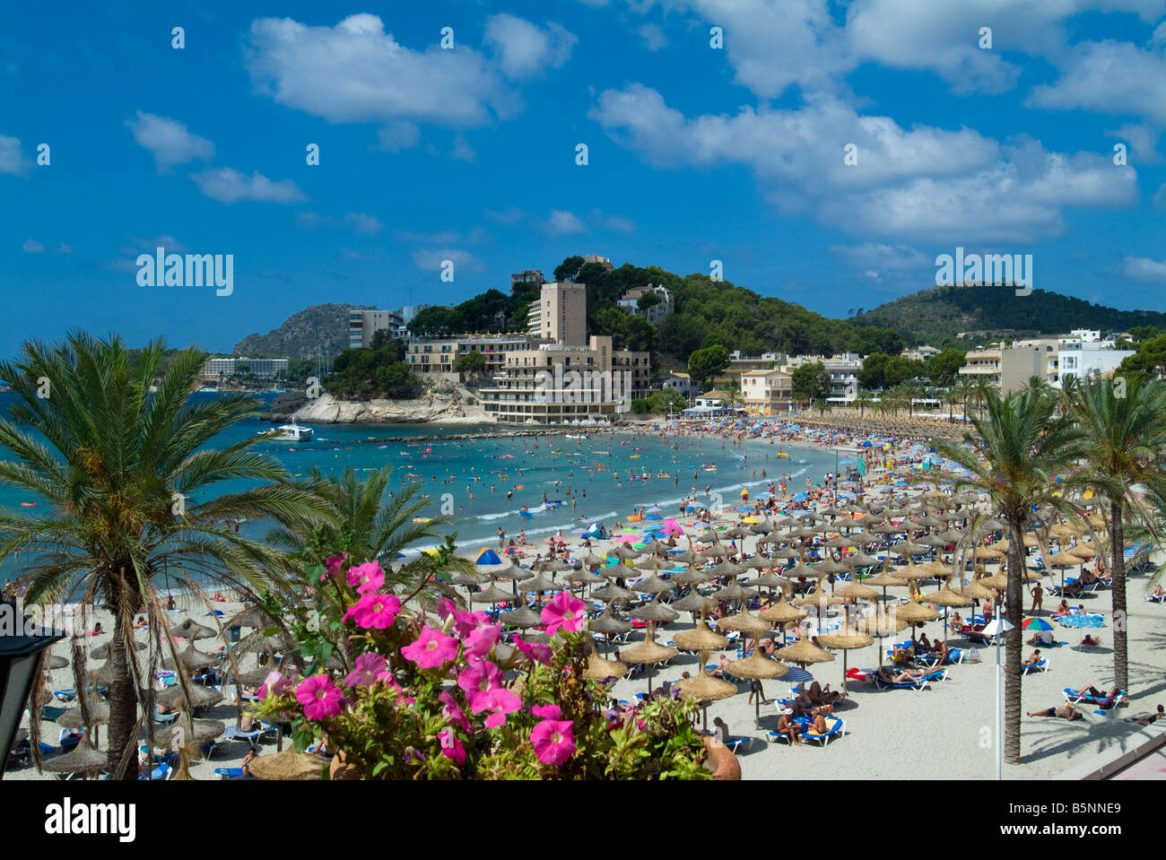 Paguera Beach Mallorca Balearics Spain Stock Photo Alamy