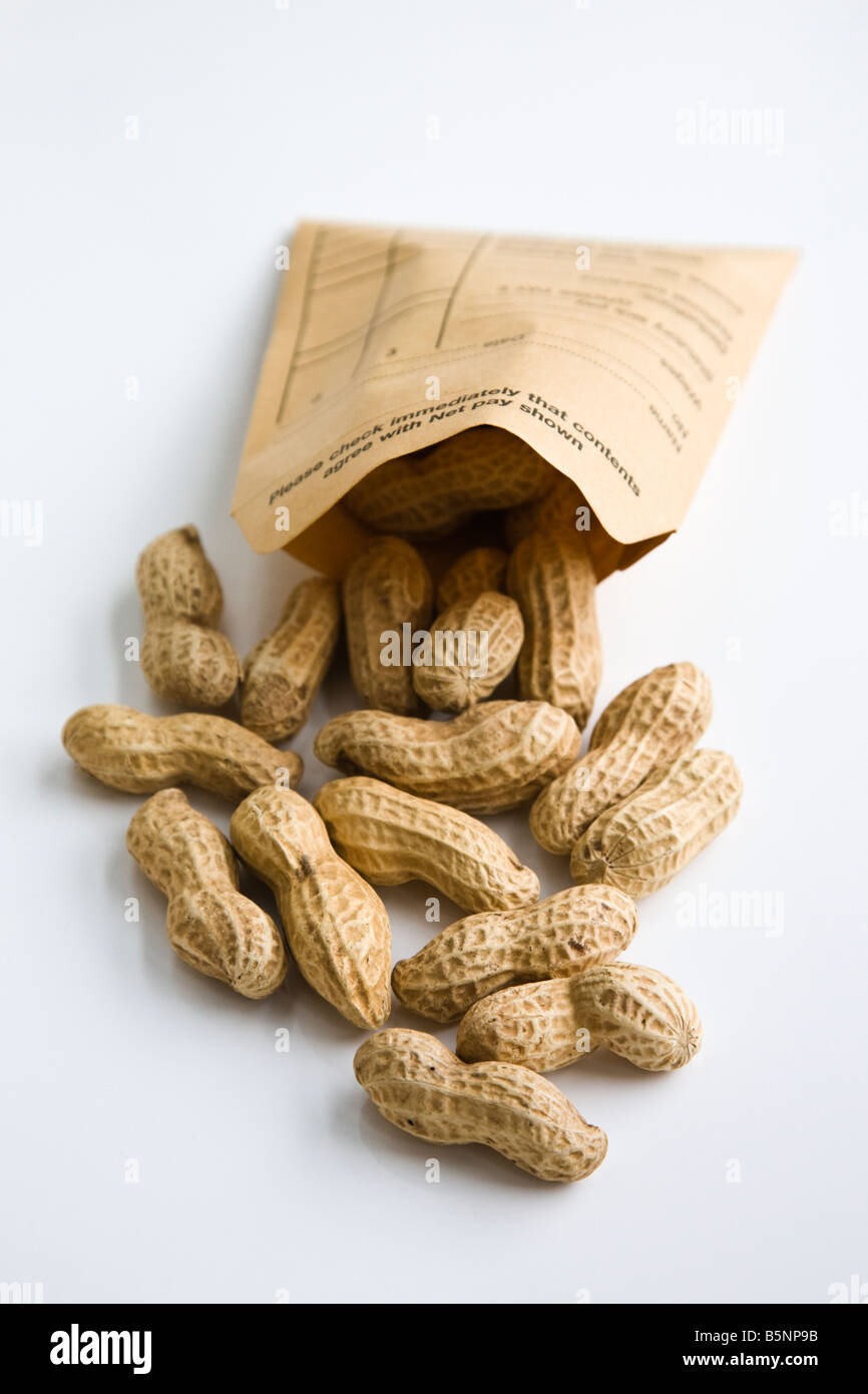 Peanuts spilling out of wage packet - Stock Image