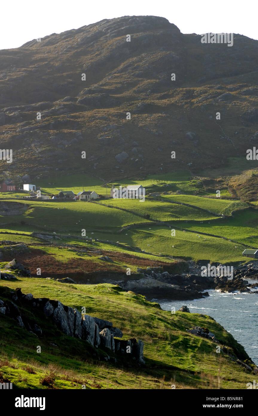 Irish Farm, County Cork - John Gollop - Stock Image