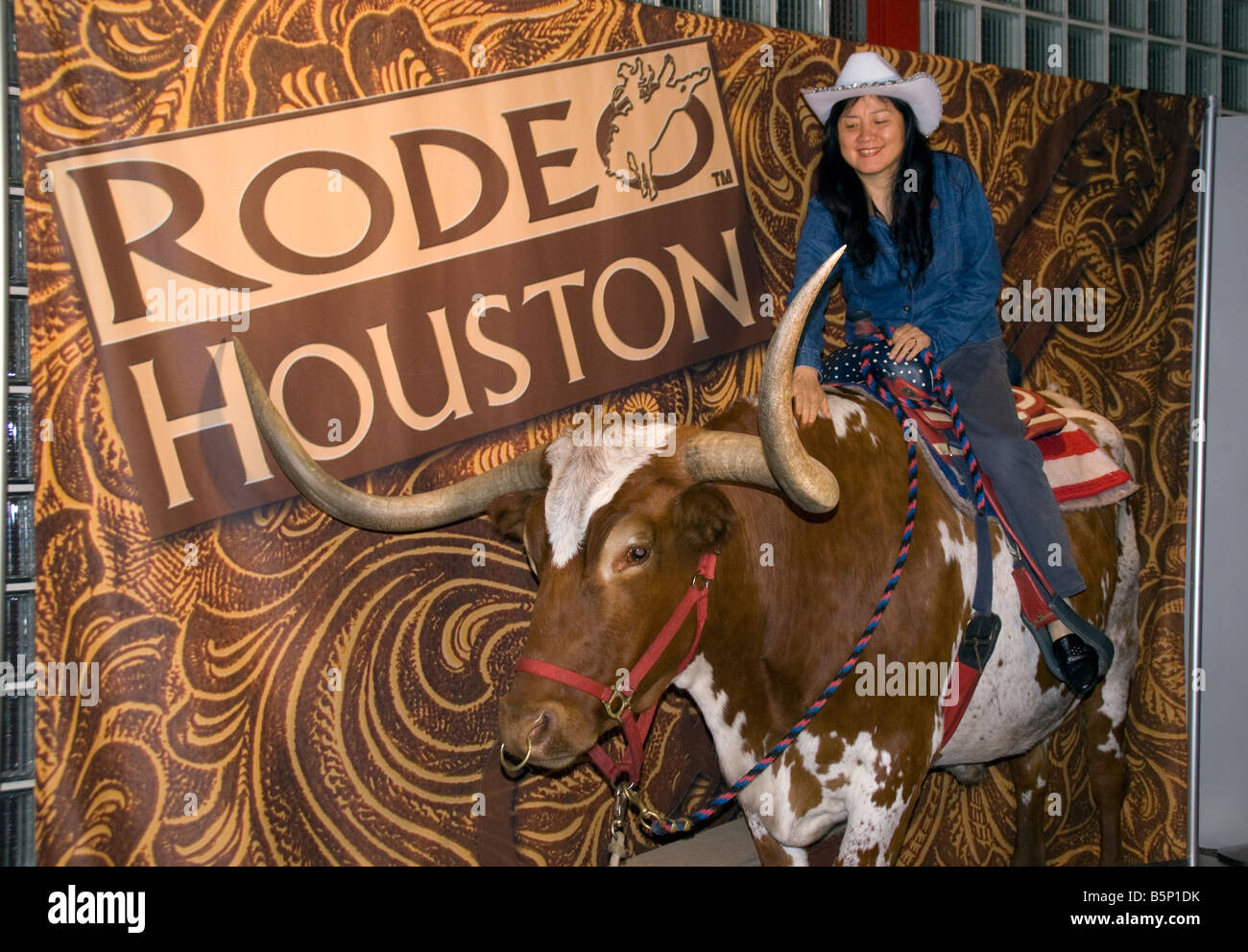 Houston Rodeo, tourist posing for photo on a Texas longhorn steer - Stock Image